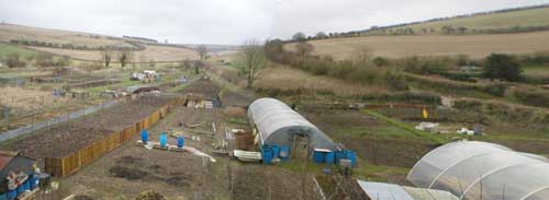 maiden newton allotments