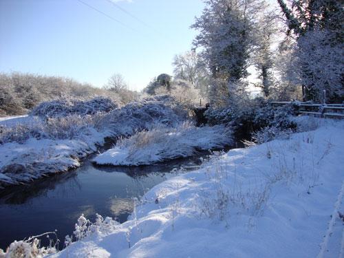 The Frome, near Cruxton.